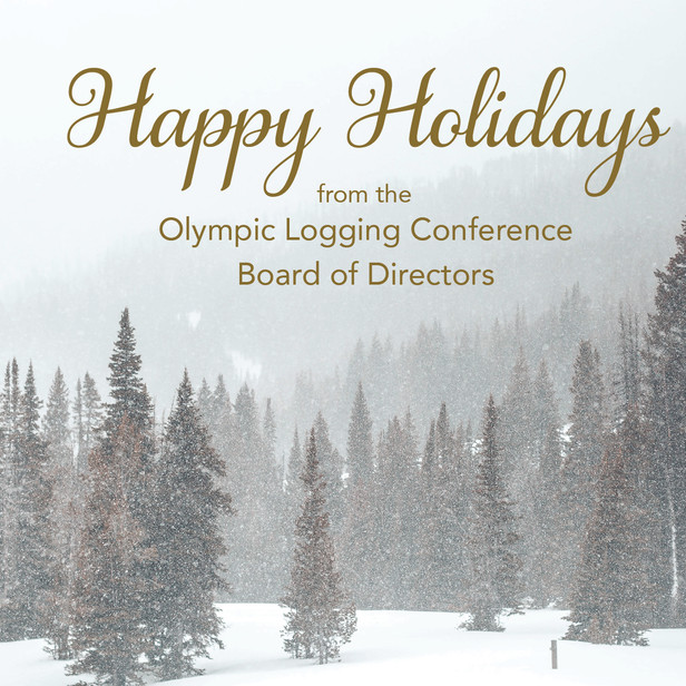 Holiday Postcard & Invitation Self-mailer