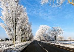 Frosty-Road