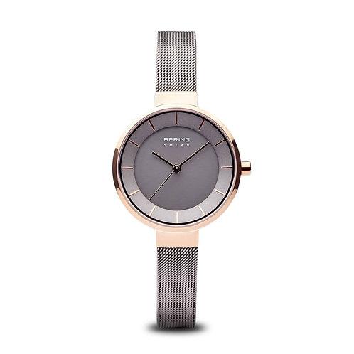 Bering dames horloge 14631-369