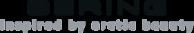 bering-logo.png
