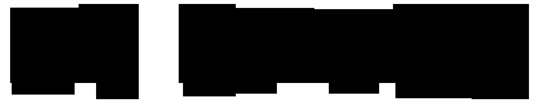 logo_zwart_despinse.png