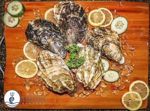 Live Pacific Oysters (生蚝) $/dozen