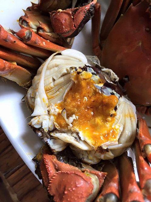 Hairy Crabs (大闸蟹)