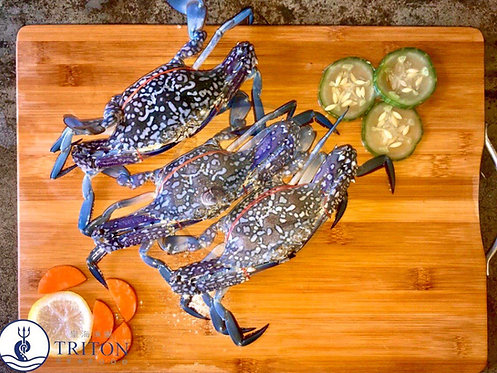 Singapore Wild Caught Flower Crab (蓝花蟹) $/KG