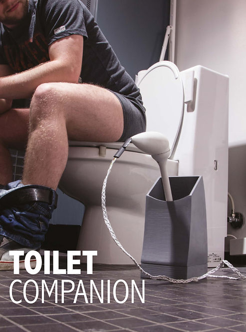 Toilet Brush poster for exhibitions