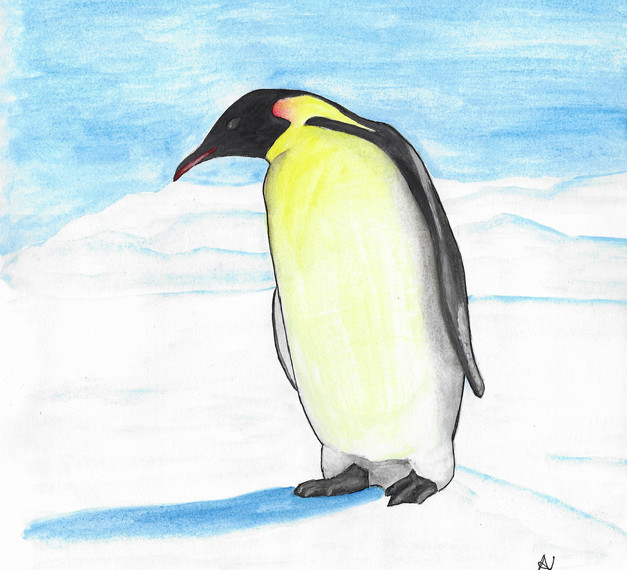 LONELY PENGUIN I