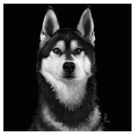 husky-dog-black-portrait-painting