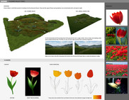 zafari-flower-valley-environment-design.