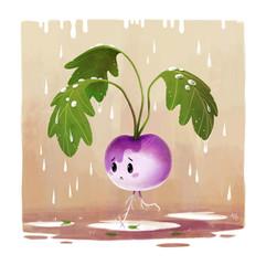 turnip-character-rain-illustration