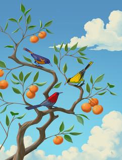 tree-branch-birds-sky-illustration