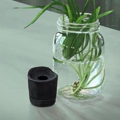 plant-jar-life-painting-study