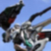 DSC02860-001_edited.jpg