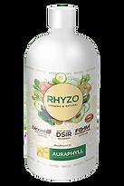 rhyzo.png