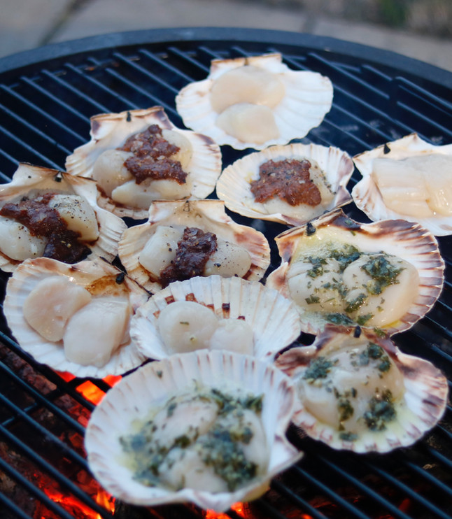 Scallops three ways and langoustines over birch wood fire