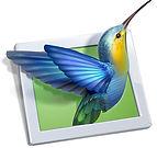 PicturesToExe-logo.jpg
