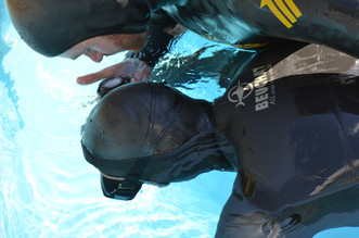 Q&A #5. ''How influential is the cold-bowl breathold exercise to Diving Reflex''