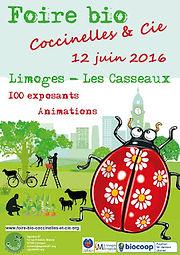 Produits déstockés Ambiance Bois Foire bio Coccinelles Limoges Ardelaine