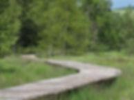 Aménagement Paysager de Négarioux-Malsagnes - Platelage - Chemin Découverte tourbière zone humide bois français issu de foret française bois massif transformé en France sans traitement