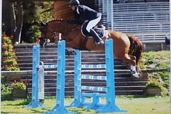 Compétition CSO Coaching chevaux à vendre Haras d'Eloge