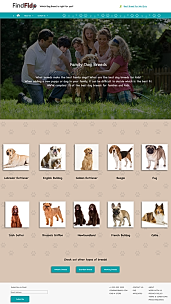 Family Dog Breed Main Page.png