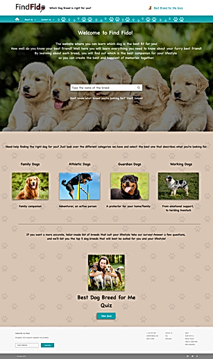 FindFido Home Page – Concept 1 – 3.png