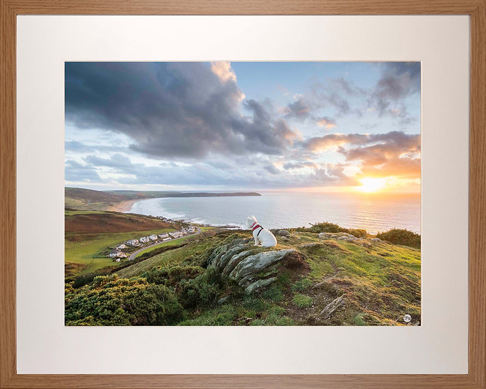 Wood Framed Picture - 400 x 500mm - Poppy Overlooking Woolacombe