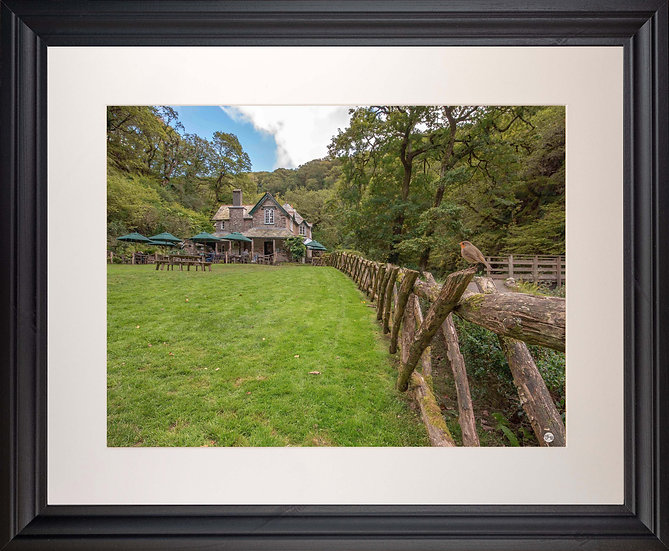 Black Framed Picture - 400 x 500mm -Watersmeet Robin