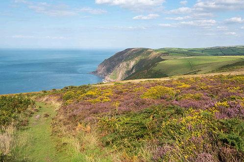 Trentishoe Colourful Coast Path