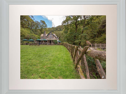 White Framed Picture - 400 x 500mm -Watersmeet Robin
