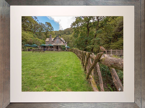 Rustic Wood Framed Picture - 400 x 500mm -Watersmeet Robin