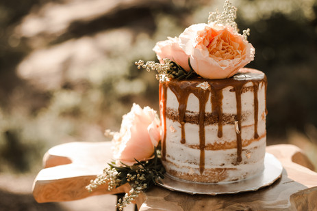 Small Elopement Cake