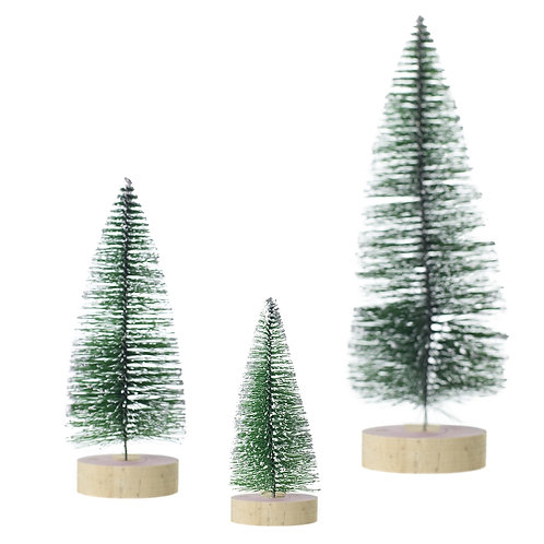 Allentown Trees