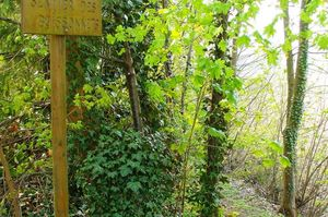 Sentier des Boissonets (Gistoux).jpg