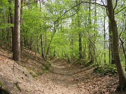 Sentier des Papeteries (Corroy).jpg