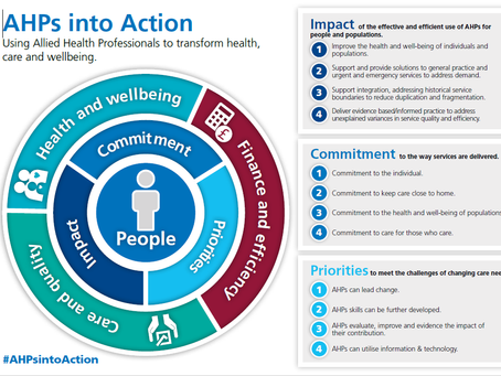 AHPs into Action: What's it all about?