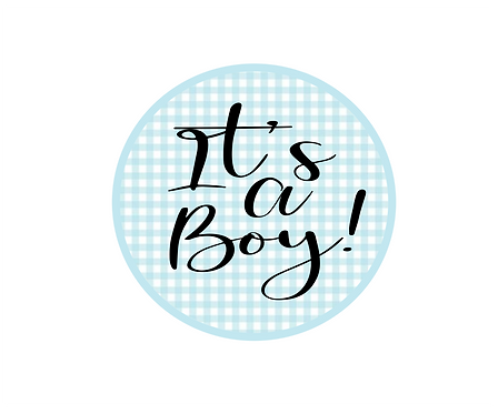It's A Boy Gingham Package Tag Files