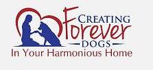 Dog training at The Bark Club of Lakewood, CO