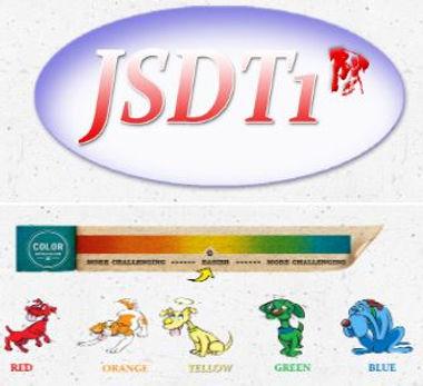 JDS1 Badge.JPG