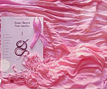 Anne Boyer - Non morire 2.jpeg