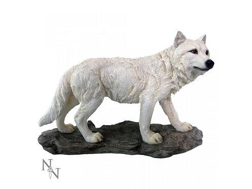 Mountain Watcher - Lupo Bianco Grande su roccia 14cm