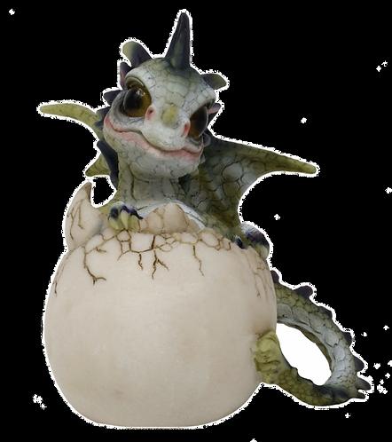 Drago dei Boschi - Cucciolo nell'uovo Grande Tipo B 10cm
