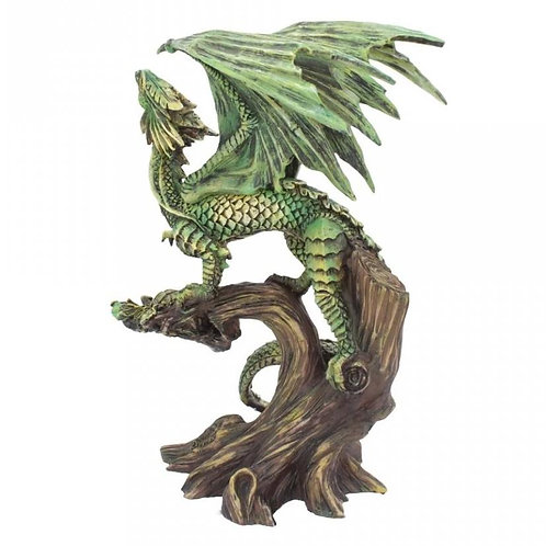 Adult Forest Dragon - Age of Dragons by Anne Stokes