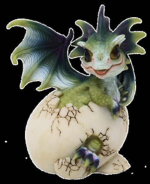 Drago dei Boschi - Cucciolo nell'uovo Grande Tipo A 10cm
