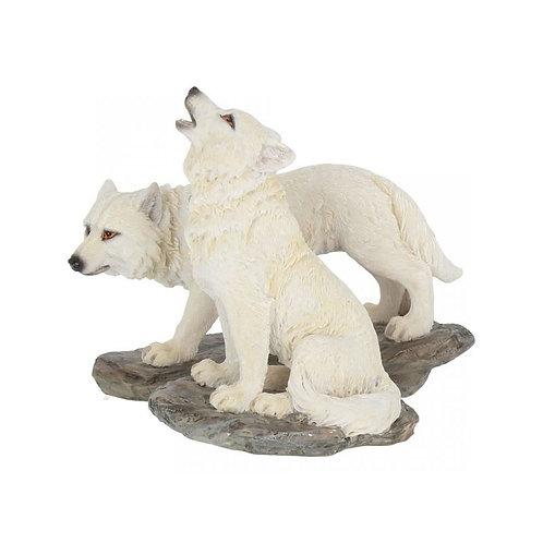 Lupo Bianco Piccolo su roccia