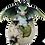 Thumbnail: Drago dei Boschi - Cucciolo nell'uovo Piccolo Tipo C 7,5cm