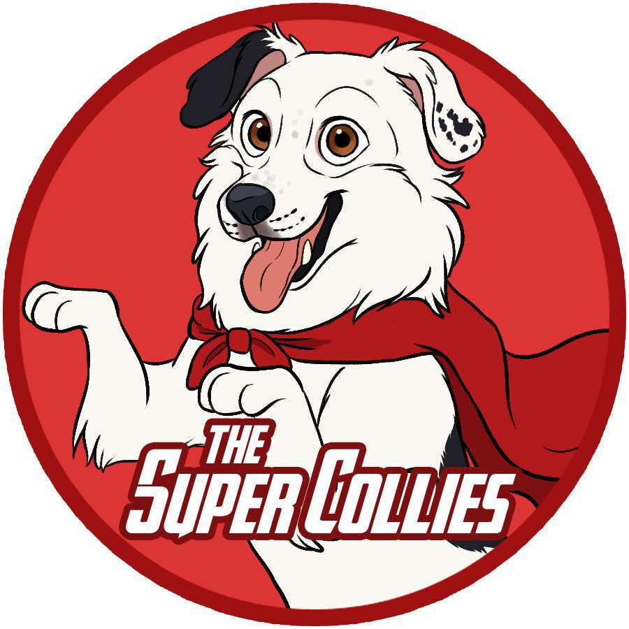 About   Hero, The Super Collie