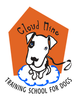 cloudninedogtraining-transparent-LG.png
