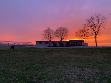 Beautiful sunset behind the kennel - a frequent view