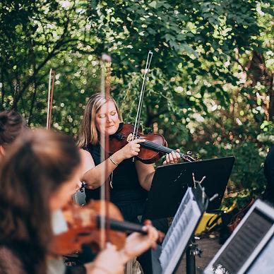 Vivace Strings.jpg