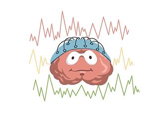 brain-mapping.webp